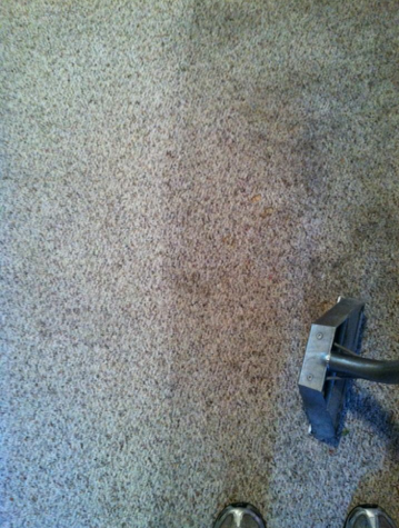 Before and AFter Carpet Cleaning from Cleaned by Essex